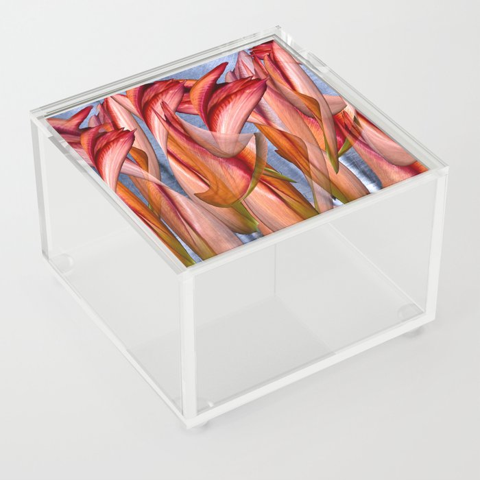 Dance of the crazy Tulips Acrylic Box
