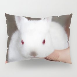 Bunny in hand Pillow Sham