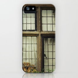 Cuddle iPhone Case