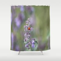 ladybug Shower Curtains featuring Ladybug by Stecker Photographie