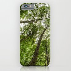 Nature Reaching For The Sky Slim Case iPhone 6s