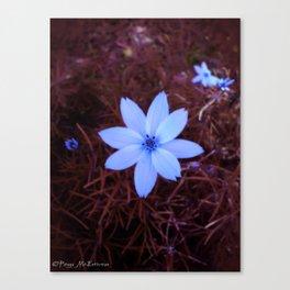 Shambhala Flower - White on Red 1 Canvas Print