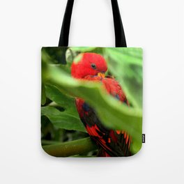 Red Lory Tote Bag