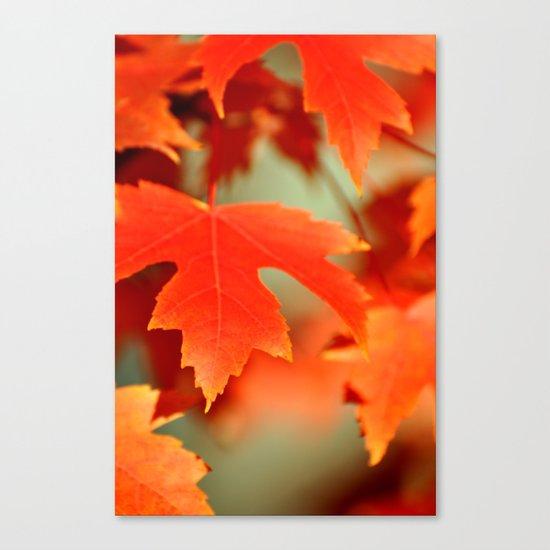 FALL LEAF - ORANGE Canvas Print