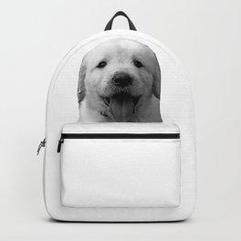 golden labrador puppy b&w Backpack