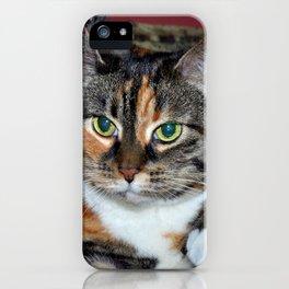 kitkat iPhone Case