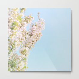 Blossoms Metal Print