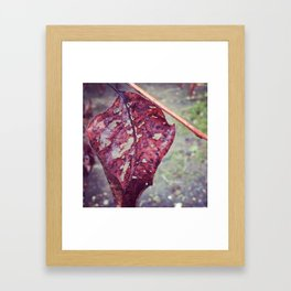 Scars Framed Art Print