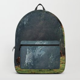 Mountains landscape Backpack
