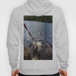 Puppy Stepping on Stones Hoody