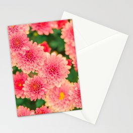 Flowers x Summer Stationery Cards