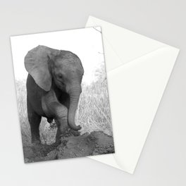 Nkala Orphan Collection (3-10) Stationery Cards