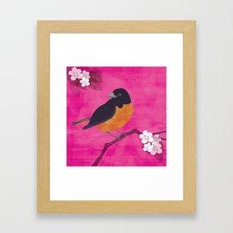 Oriole Bird on Pink Framed Art Print