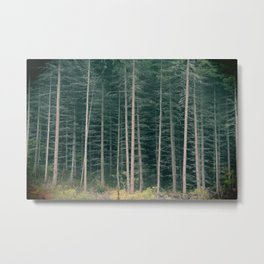 The Forest Has Me Metal Print