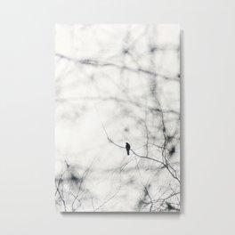 Freebird iii - Freebirds Series Metal Print
