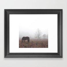 Horse in the Mist Framed Art Print