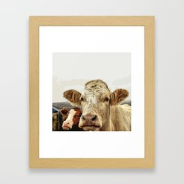 A cow greeting is like no other Framed Art Print