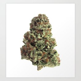 King Kush Art Print