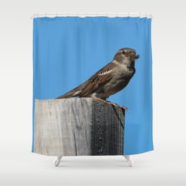 Breakfast or Lunch? Shower Curtain