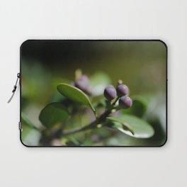 Blueberries Laptop Sleeve