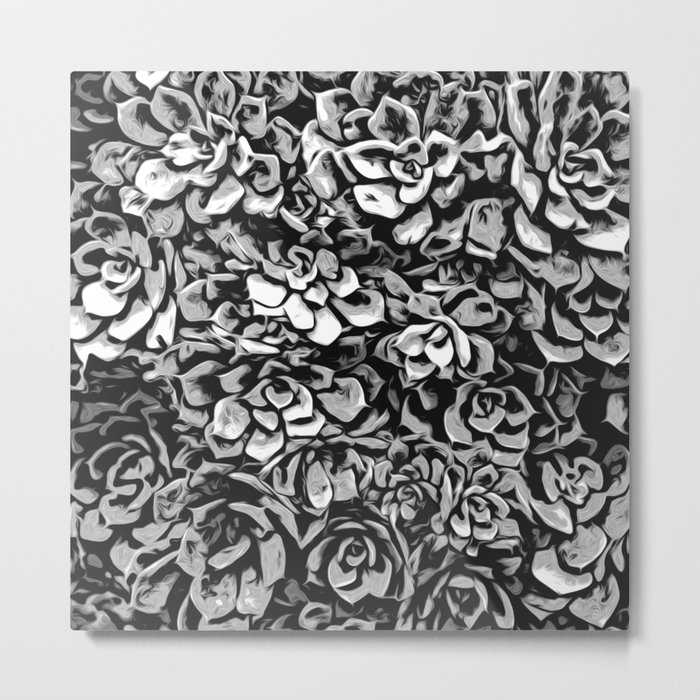 Plants of Black And White Metal Print