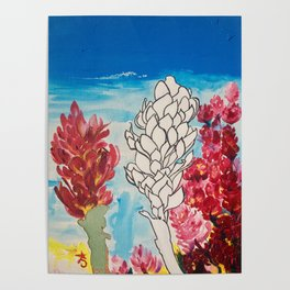 Alpinia purpurata – Red Ginger Flower Poster