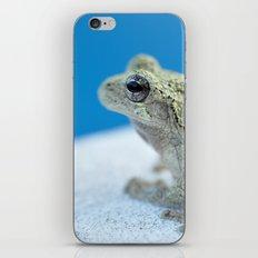 Ribbit iPhone & iPod Skin