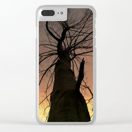 Tree's of Gold Clear iPhone Case