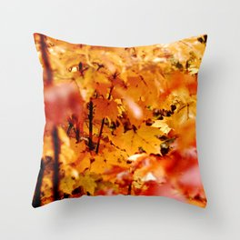 Maple tree in fire the fall Throw Pillow