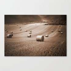 Duo Rolls Canvas Print