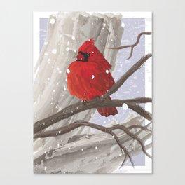 Bird of Winter Canvas Print