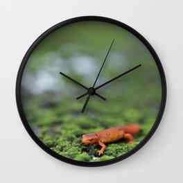 Orange Salamander Travels Wall Clock