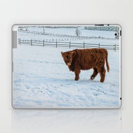 Are you looking at me, Scotish Highland Cow Laptop & iPad Skin