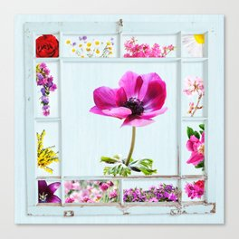 Grungy frame with summer flowers Canvas Print
