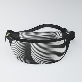 0431s-MM BW Striped Female Figure Curves of Power Fanny Pack