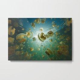 Jellyfish Lake Metal Print