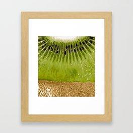 Kiwi Design Framed Art Print