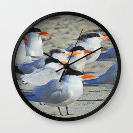 Elegant Terns Wall Clock