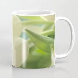 Spring has sprung again Coffee Mug