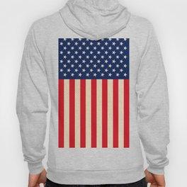 USA faux burlap flag Hoody