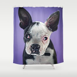 Super Pets Series 1 - Super Bugsy 2 Shower Curtain
