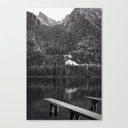 Black and white magic I Canvas Print