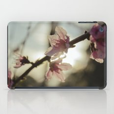 Peach Blossoms iPad Case