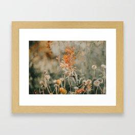 The Hummingbird Wings Framed Art Print