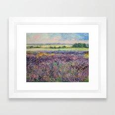 Provence Lavender Framed Art Print