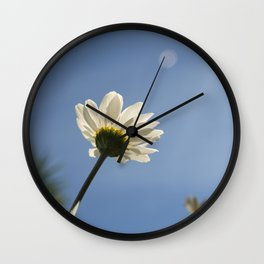 WHITE DAISY FLOWER LOOKING UP AT THE SUN Wall Clock