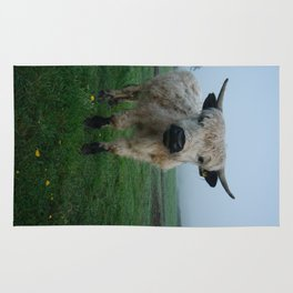 Young White High Park Cattle Rug