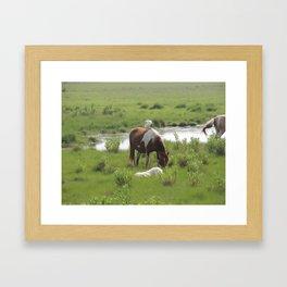 Chincoteague Wildlife Framed Art Print