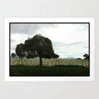 Fort Rosecrans National Cemetery- 2  Art Print
