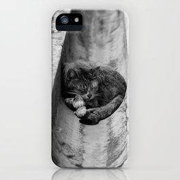 Peaceful Asleep iPhone Case